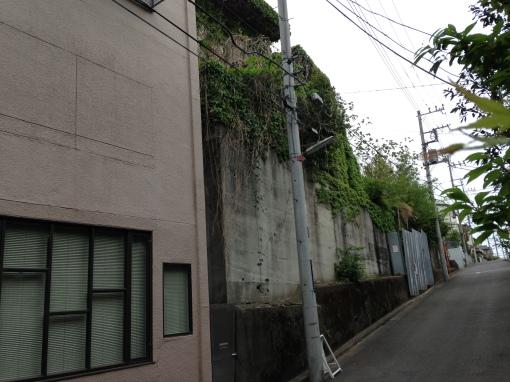 kichijoji castle3
