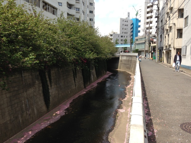 Daikanyama Dilapidation3