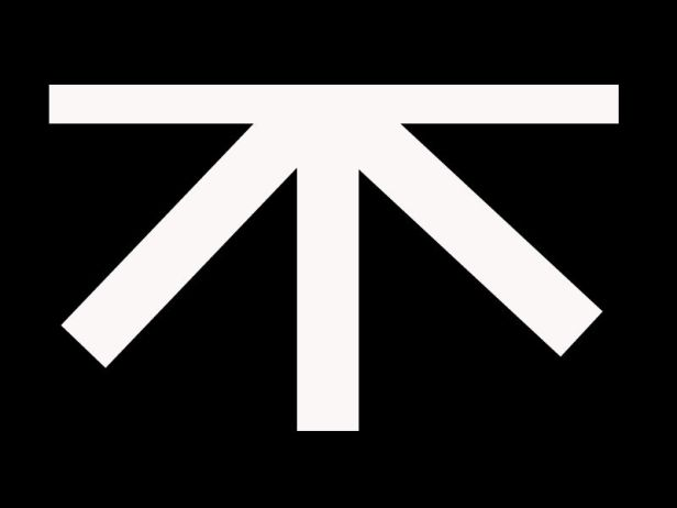 There was a flag like this during the anti-Yasukuni protest.  The Kanji mean negative a think not sure if it represents a party.