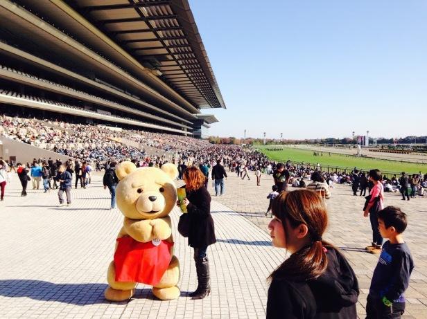 TED at Fuchu Race Track2